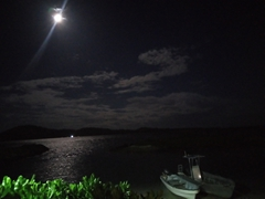 Moonlight at Coral View Resort; Tavewa Island