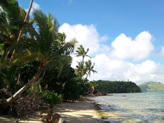 Tavewa Island beach view