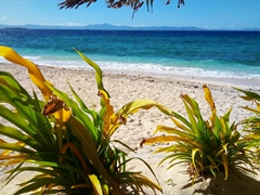 Another perfect day on Beachcomber Island