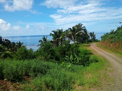 Coastal scenery on our drive to Lavena - the road is unpaved and quite bumpy!