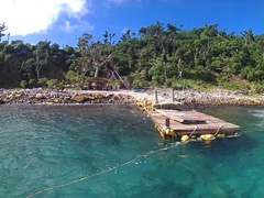 Namena Island Dive Resort - some of the best diving in the world can be found near here!