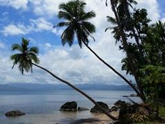 Beach scene near Daku Resort; Savusavu