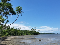 Low tide near Wavi Island