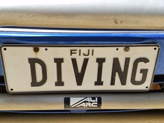 Diving license plate at Koro Sun Divers - we loved meeting and chatting with Colin and Janine!
