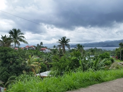 We loved the view driving into Savusavu - gorgeous glimpses of the bay below teased us on the drive into town