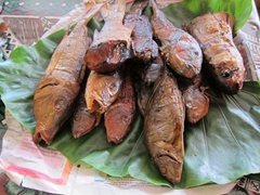 Smoked reef fish - we bought some but the taste left a lot to be desired