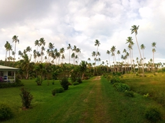 Panoramic view of our home for 2 weeks on Savusavu