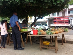 Fresh fruit for sale on main street; Savusavu