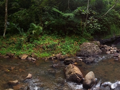 Panorama of pretty Vuadomo waterfall