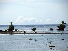Low tide; Vanua Levu