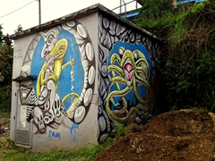 Graffiti art is a common sight in Port Vila