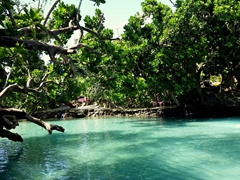 "Eton natural pool, also known as the ""Blue Lagoon"". Entrance is 300 VUV"