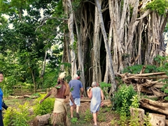 Being led to the huge banyan tree