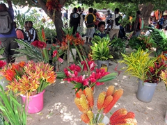The pretty flower market in Port Vila