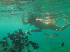 Becky amazed by the number of fish seen while snorkeling off Survivor Beach