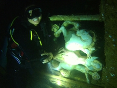 Becky smiles after kissing the horse; SS President Coolidge - one of the best dive wrecks in the world!