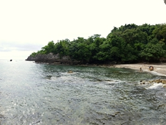 Panoramic view of our snorkel spot - a pretty cobalt coral garden and lots of healthy fish here