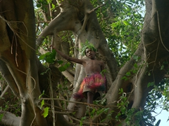 Villager calling out a warning from atop the banyan tree; Black magic tour