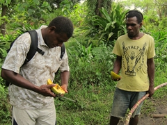 Rex (our host at Tanna Magic) cuts up papaya and sugarcane for us to snack on during our village walk