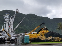 Massive fishing nets at the harbor in Pago Pago
