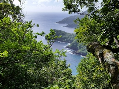 The hike up to Mount Alava is steep and slow going but we are rewarded with glimpses of the coastline at random intervals