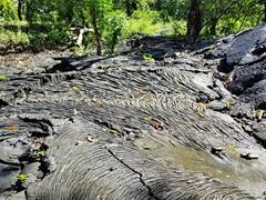 Saleaula lava field