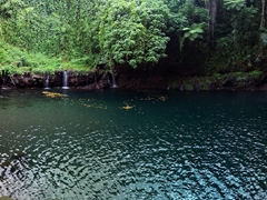Afu Aau waterfall - and we have this lovely swimming hole all to ourselves!