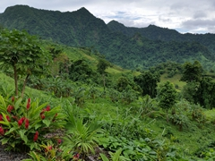 Le Mafa Pass is a scenic mountainous road linking the north side of Upolu to the south