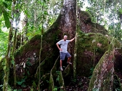 Robby posing on Ma Tree, a massive mape tree on the southern coast of Upolu