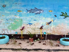 Bathroom wall decor; Taufua Beach Fales