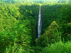 Papapai-uta Waterfall, the highest waterfall in Samoa