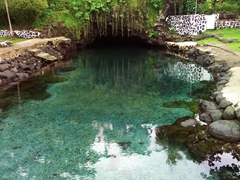 Swimming in the Piula Cave Pool is not to be missed...a real highlight of Upolu!