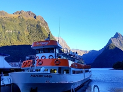 Go Orange offers an early morning Milford Sound special ($45 for a 2 hour cruise including breakfast)