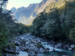 Gorgeous scenery on the drive from Milford Sound to Te Anau