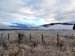 Early morning frost on our drive from Te Anau to Manapouri