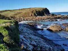Curio Bay lookout