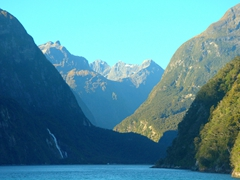 Scenery as we cruise Milford Sound
