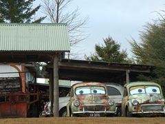 Old cars checking us out in Manapouri