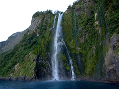 "Stirling Falls, a whopping 3x the height of Niagara Falls and the one that Hugh Jackman jumped off in the movie ""Wolverine""; Milford Sound"