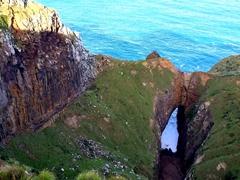 Lovers Leap; Otago Peninsula