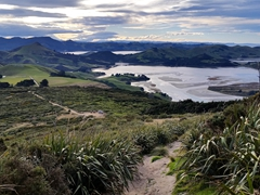 Beautiful scenery in Otago Peninsula