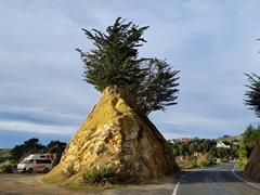 Rest stop; Otago Peninsula