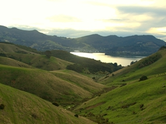 Dramatic hills of Otago Peninsula