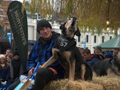 Great teamwork between this dog and owner; Queenstown Winter Fest dog barking competition