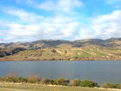 Scenery on the drive from Wanaka to Cromwell