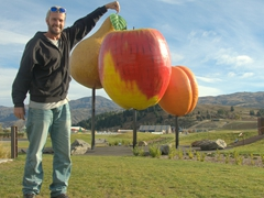 Robby plucks a pear at Cromwell's giant fruit structure