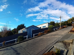 Panorama of Baldwin Street, the world's steepest residential street and home to the annual Cadbury Jaffa Race