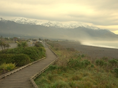 Misty morning view near our free camp site; Kaikoura