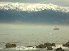 A fishing boat dwarfed by magestic mountains; Kaikoura