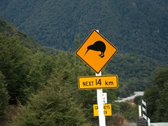 Kiwi warning road sign; enroute to Arthur's Pass